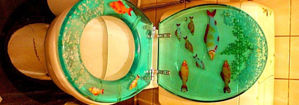 womens toilet, courtesy of gromgull on flickr